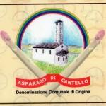 Sformatini di asparagi di Cantello con salsa al parmigiano reggiano