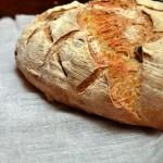 Pane alle noci con farina di Kamut e pasta madre