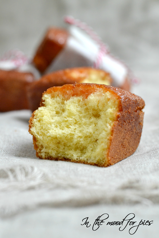 mini plumcake M v