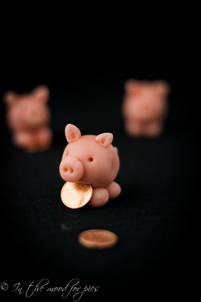 maialini penny-1