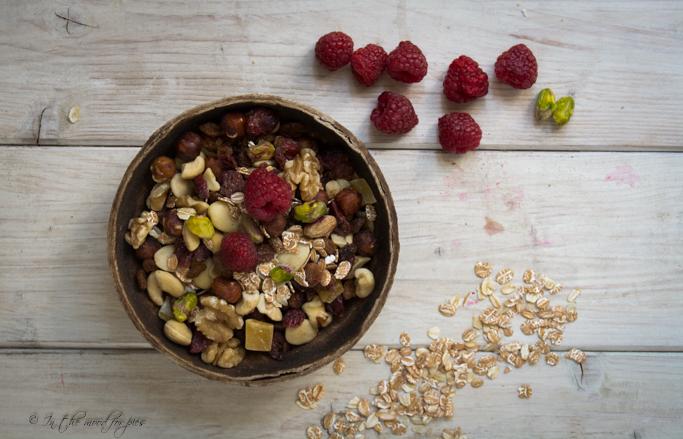 fruit trail mix -1