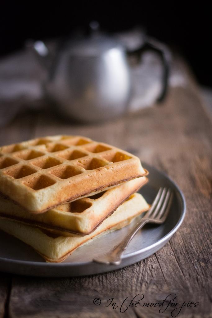 waffle salati senza nulla